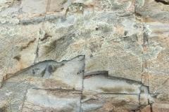 stone study 3